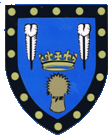 Evesham Town Council Shield